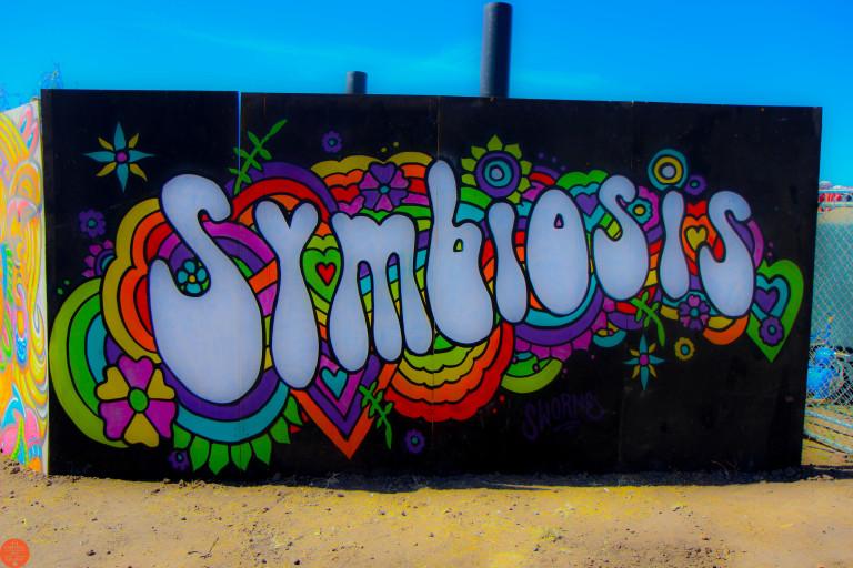 symbiosis-2016-15